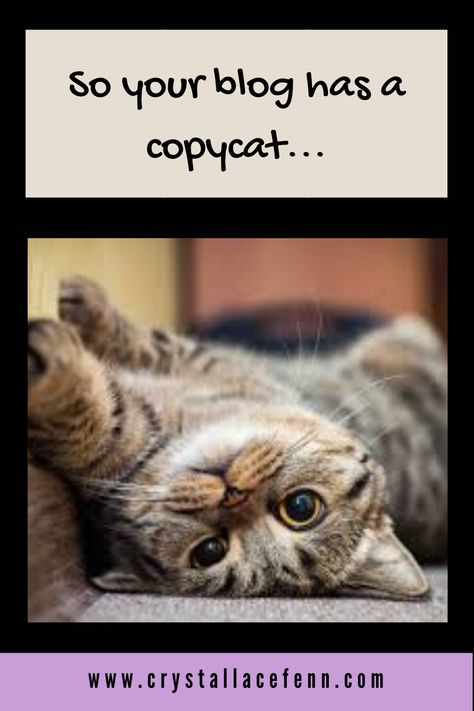 What to Do if Someone Copies Your Website...5 Aggressive Steps You Can Take